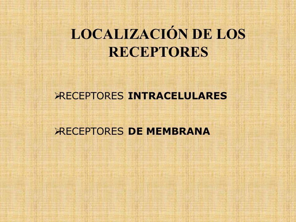 LOCALIZACIÓN DE LOS RECEPTORES