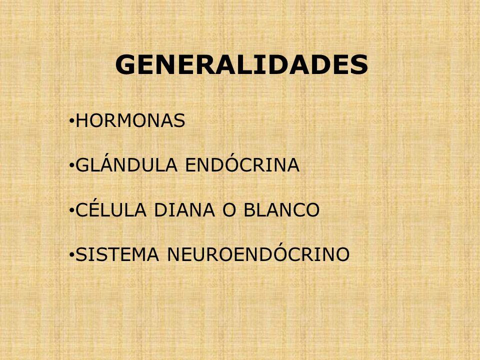 GENERALIDADES HORMONAS GLÁNDULA ENDÓCRINA CÉLULA DIANA O BLANCO