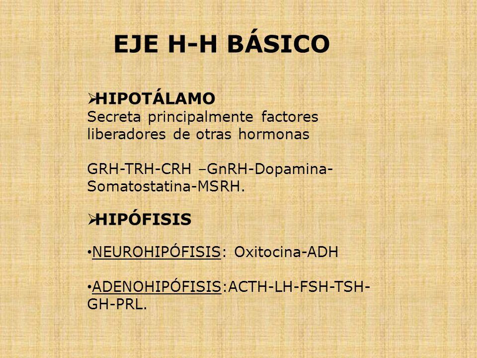 EJE H-H BÁSICO HIPOTÁLAMO HIPÓFISIS