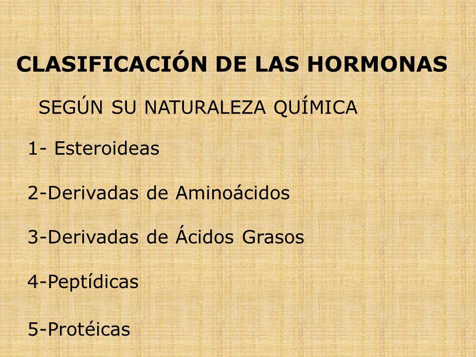 CLASIFICACIÓN DE LAS HORMONAS