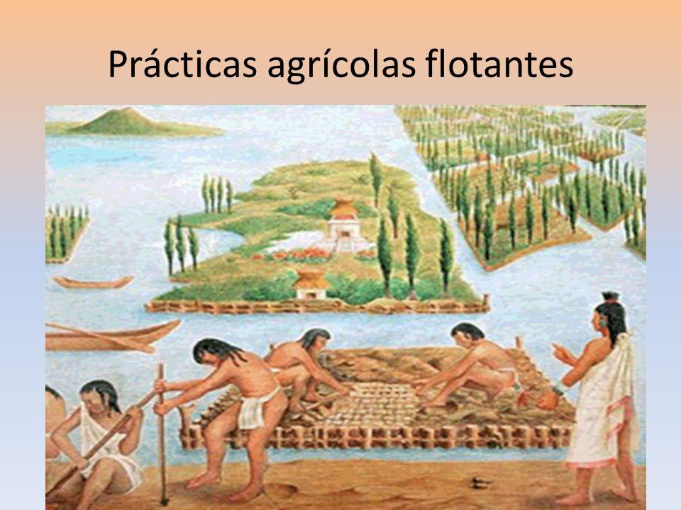 Prácticas agrícolas flotantes