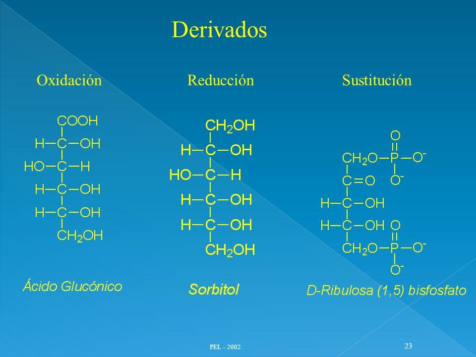 Derivados Oxidación Reducción Sustitución PEL - 2002