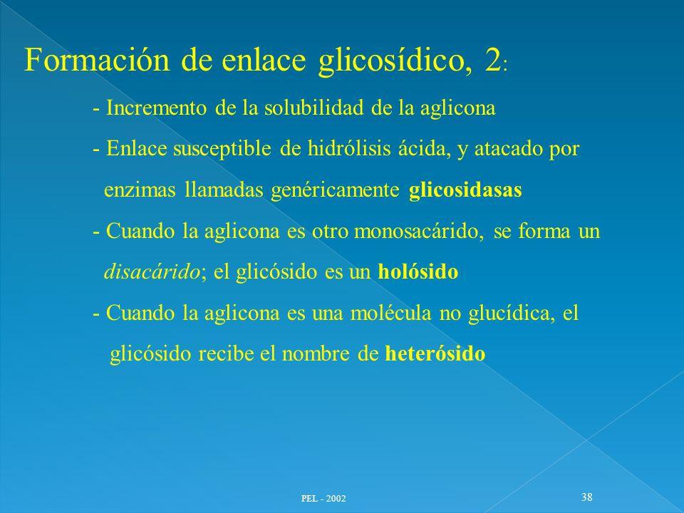 Formación de enlace glicosídico, 2: