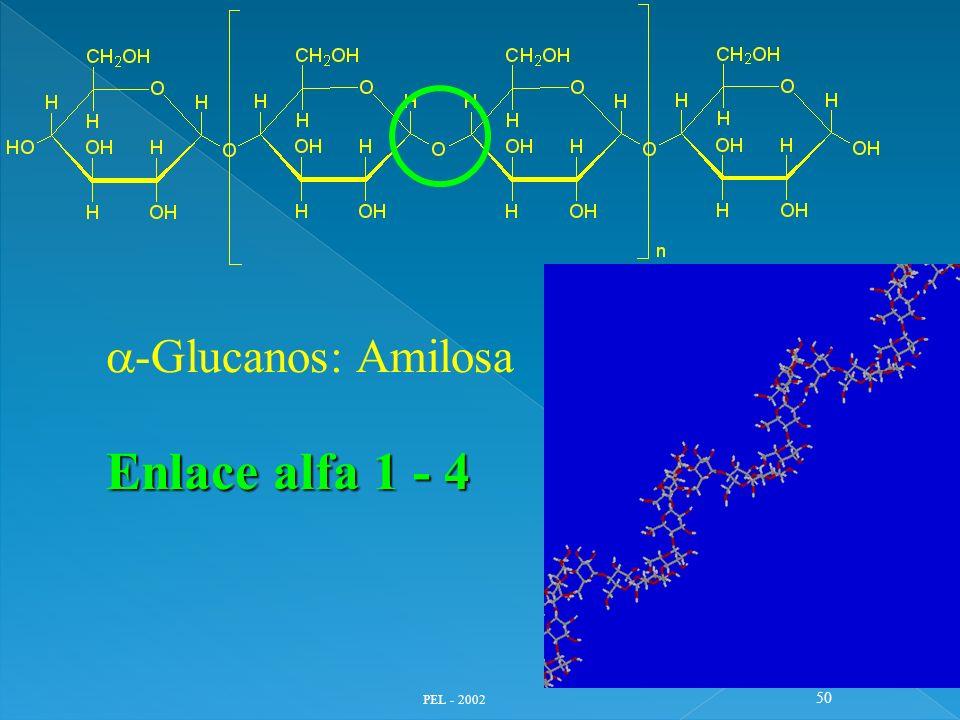 a-Glucanos: Amilosa Enlace alfa 1 - 4 PEL - 2002