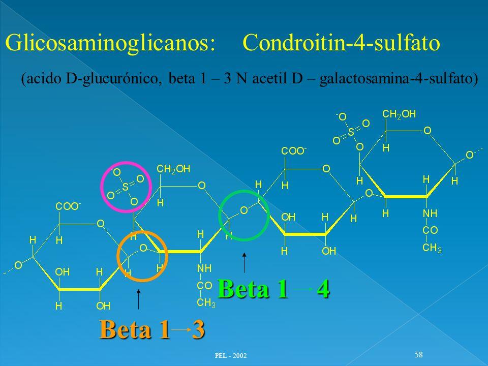 Beta 1 4 Beta 1 3 Glicosaminoglicanos: Condroitin-4-sulfato