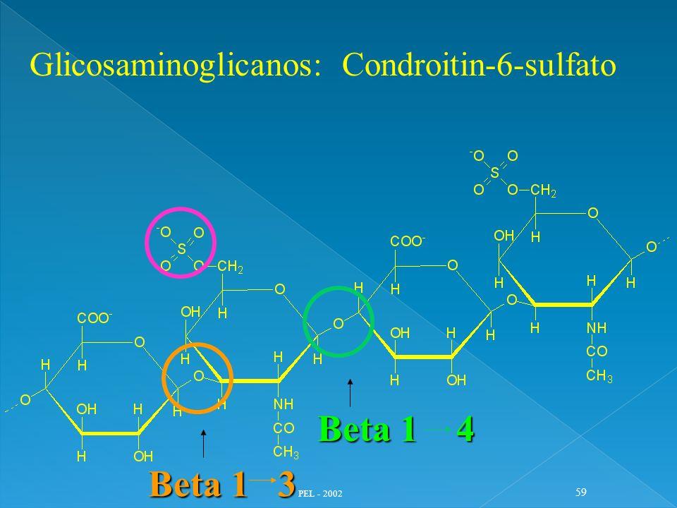 Glicosaminoglicanos: Condroitin-6-sulfato