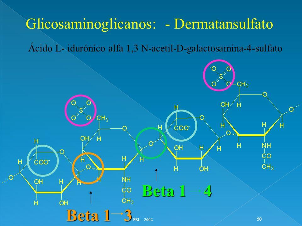 Beta 1 4 Beta 1 3 Glicosaminoglicanos: - Dermatansulfato