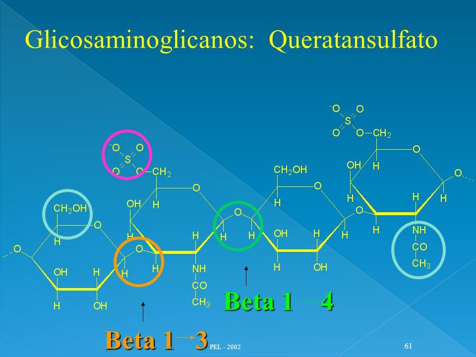 Glicosaminoglicanos: Queratansulfato