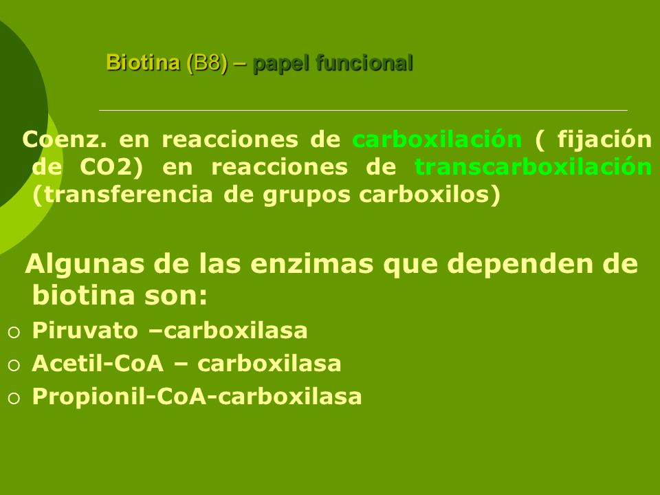 Biotina (B8) – papel funcional