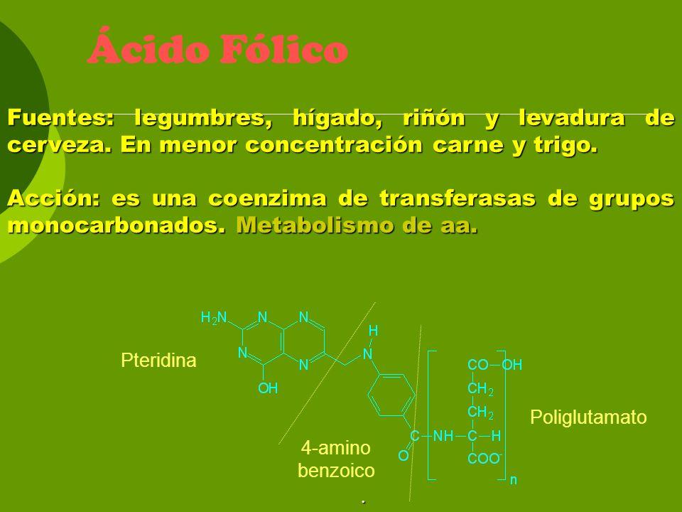 Ácido Fólico Fuentes: legumbres, hígado, riñón y levadura de cerveza. En menor concentración carne y trigo.