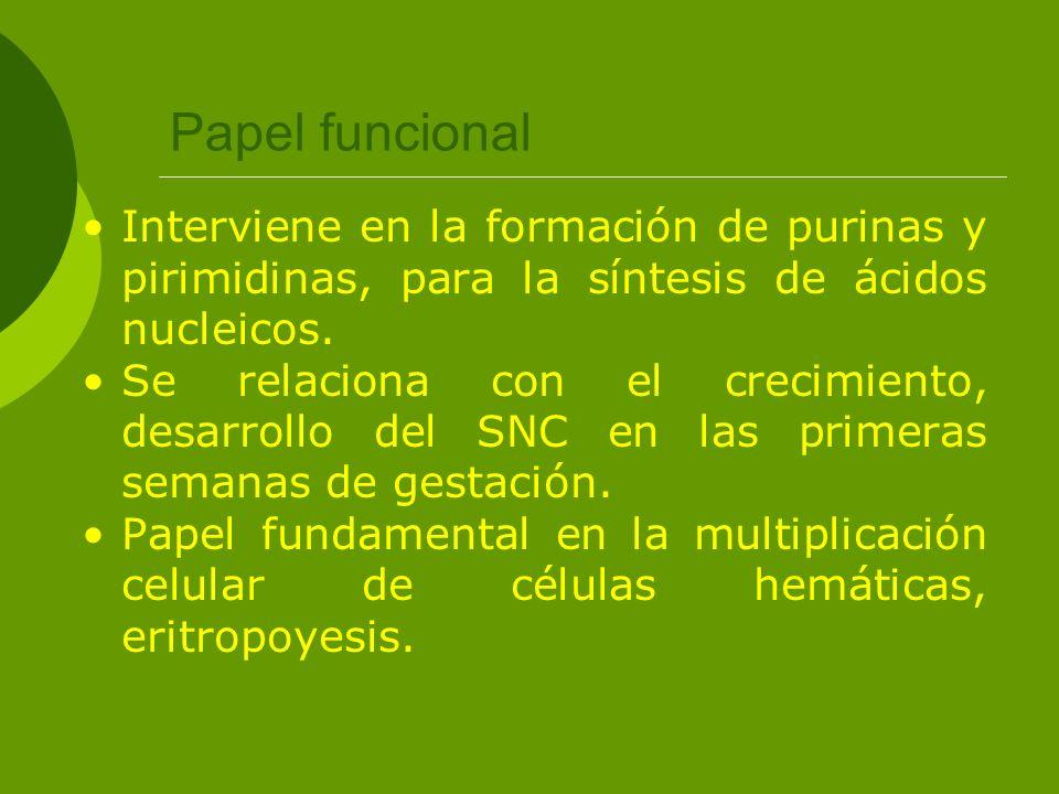 Papel funcional Interviene en la formación de purinas y pirimidinas, para la síntesis de ácidos nucleicos.