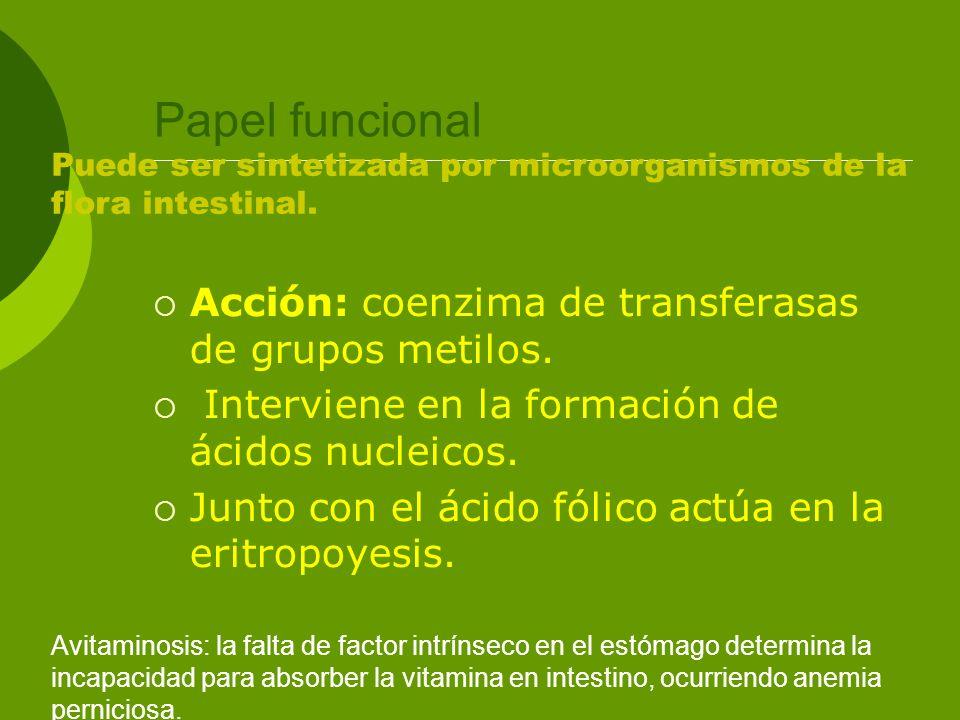 Papel funcional Acción: coenzima de transferasas de grupos metilos.