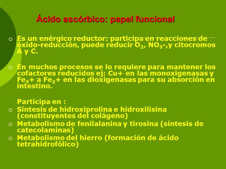 Ácido ascórbico: papel funcional