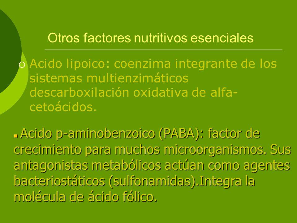 Otros factores nutritivos esenciales
