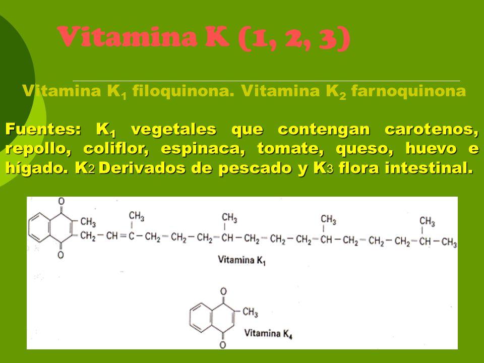Vitamina K (1, 2, 3) Vitamina K1 filoquinona. Vitamina K2 farnoquinona