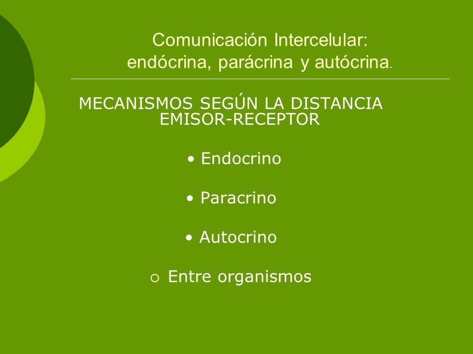 Comunicación Intercelular: endócrina, parácrina y autócrina.