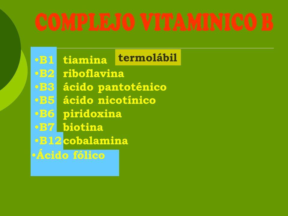COMPLEJO VITAMINICO B termolábil B1 tiamina B2 riboflavina