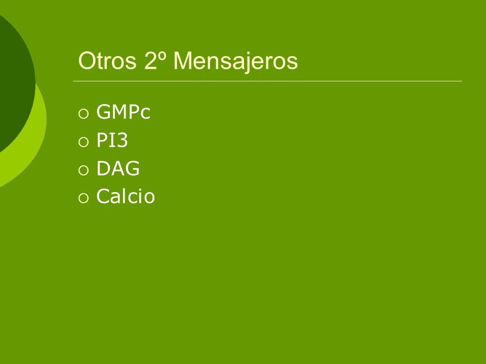 Otros 2º Mensajeros GMPc PI3 DAG Calcio