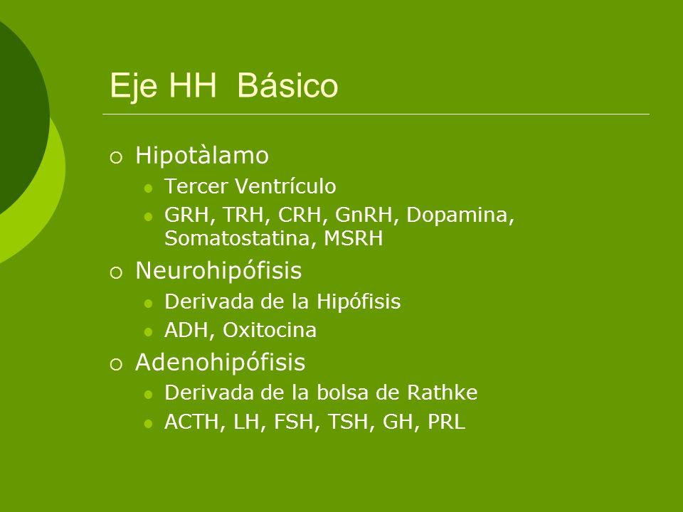 Eje HH Básico Hipotàlamo Neurohipófisis Adenohipófisis