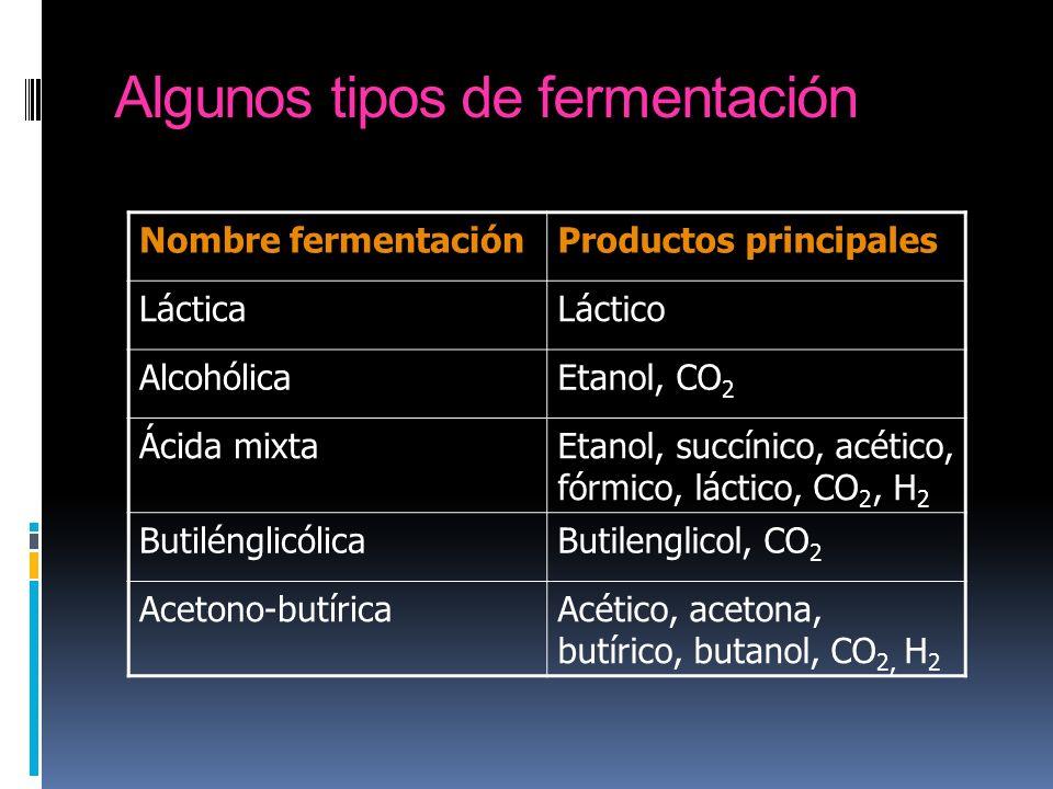 Algunos tipos de fermentación