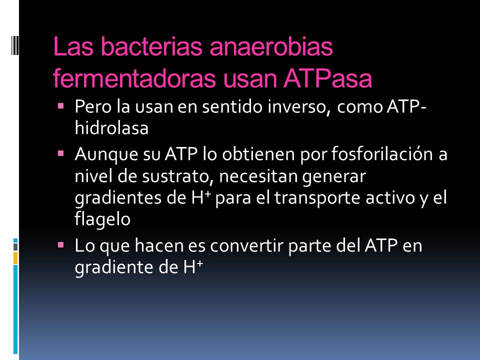 Las bacterias anaerobias fermentadoras usan ATPasa