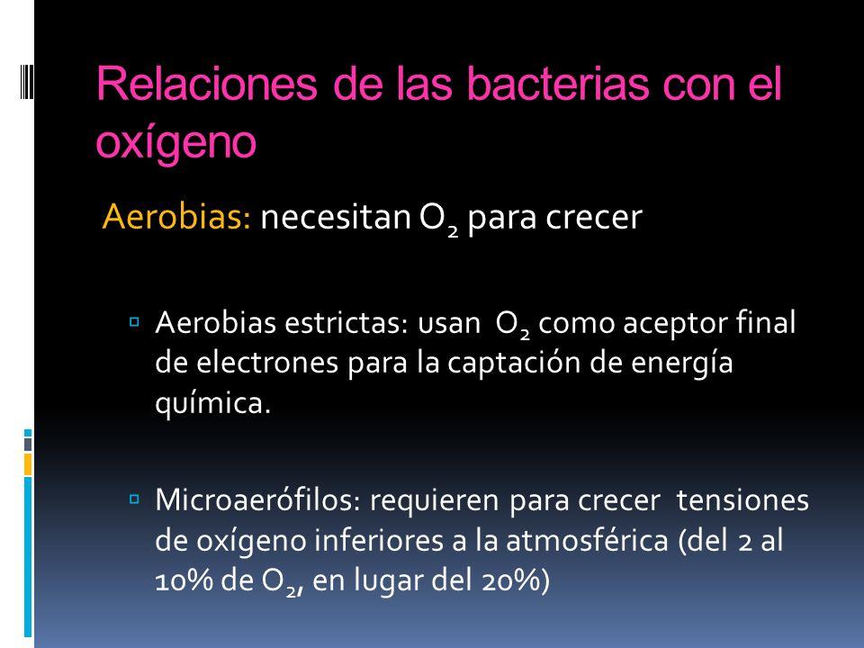 Relaciones de las bacterias con el oxígeno