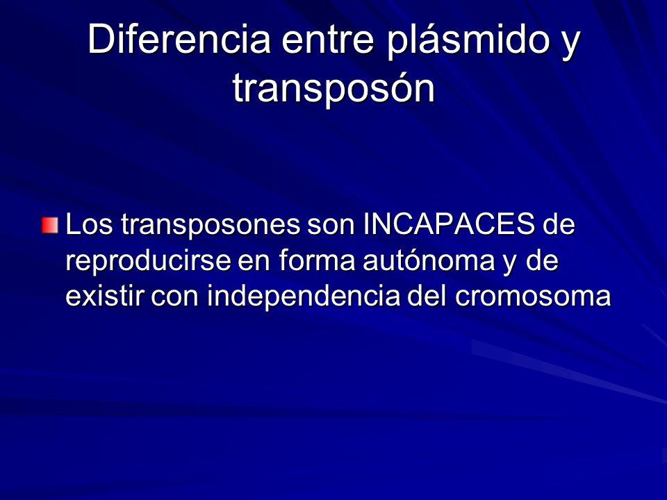 Diferencia entre plásmido y transposón