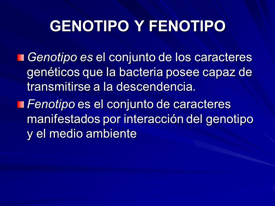 GENOTIPO Y FENOTIPO Genotipo es el conjunto de los caracteres genéticos que la bacteria posee capaz de transmitirse a la descendencia.