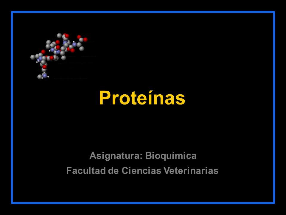 Proteínas Facultad de Ciencias Veterinarias Asignatura: Bioquímica