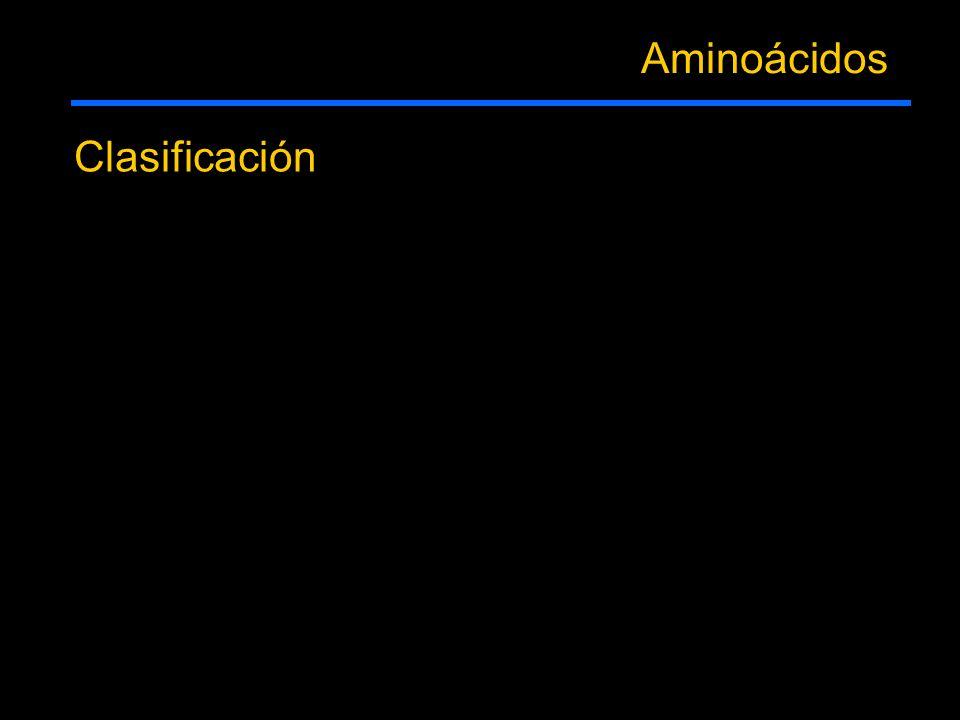 Aminoácidos Clasificación