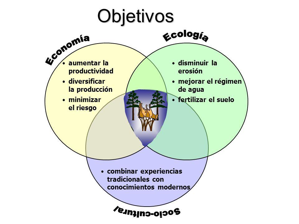 Objetivos Ecología Economía Socio-cultural aumentar la productividad