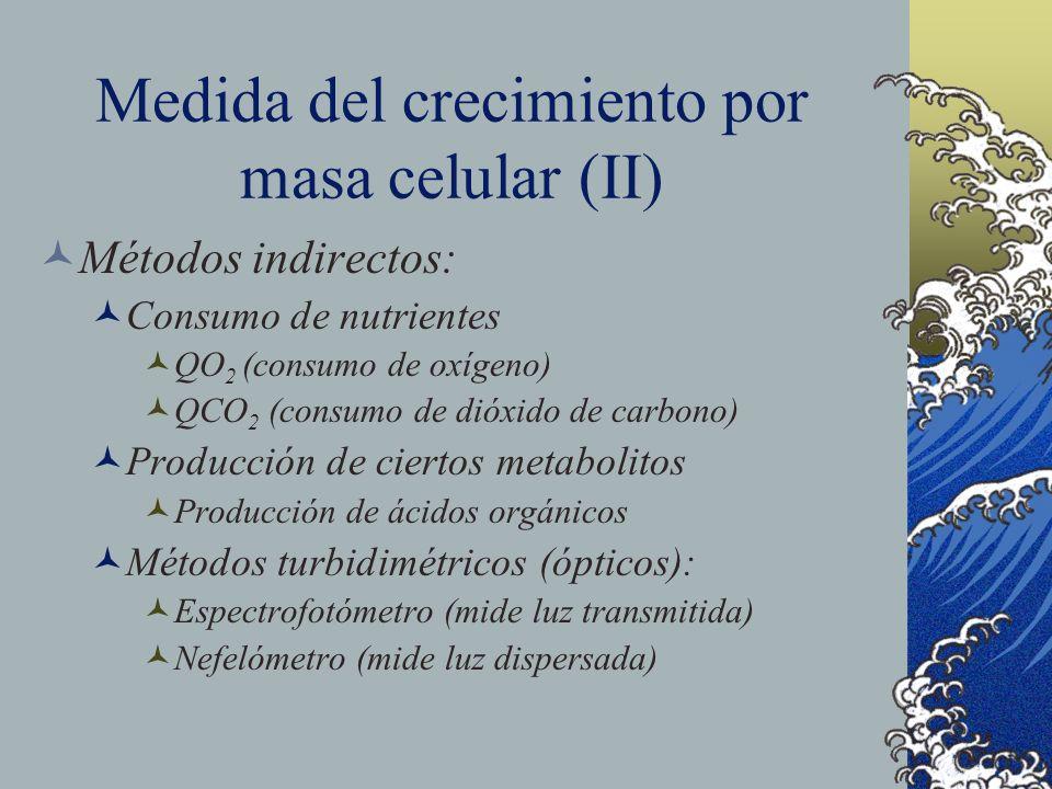 Medida del crecimiento por masa celular (II)