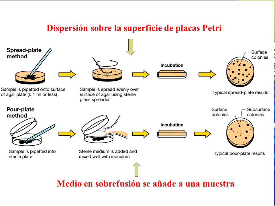 Dispersión sobre la superficie de placas Petri