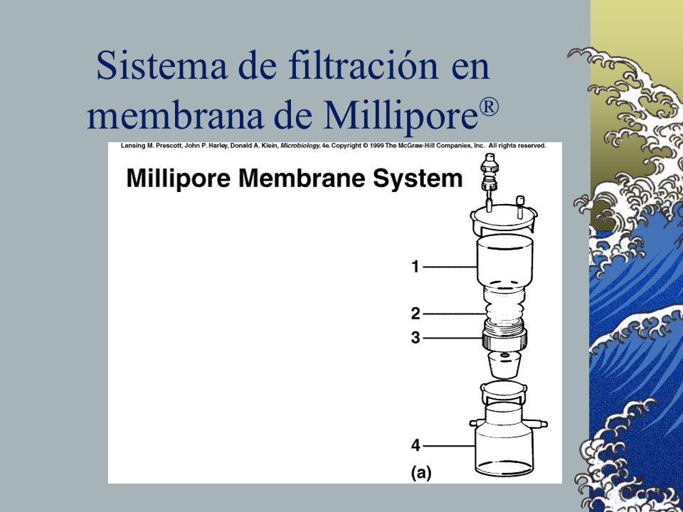 Sistema de filtración en membrana de Millipore®