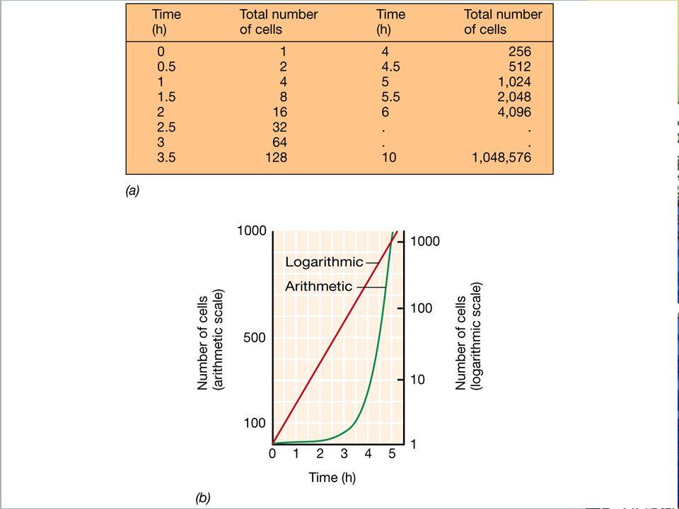 Tasa de crecimiento de un cultivo microbiano: (a) datos de una población que se duplica cada media hora (g=30 min).