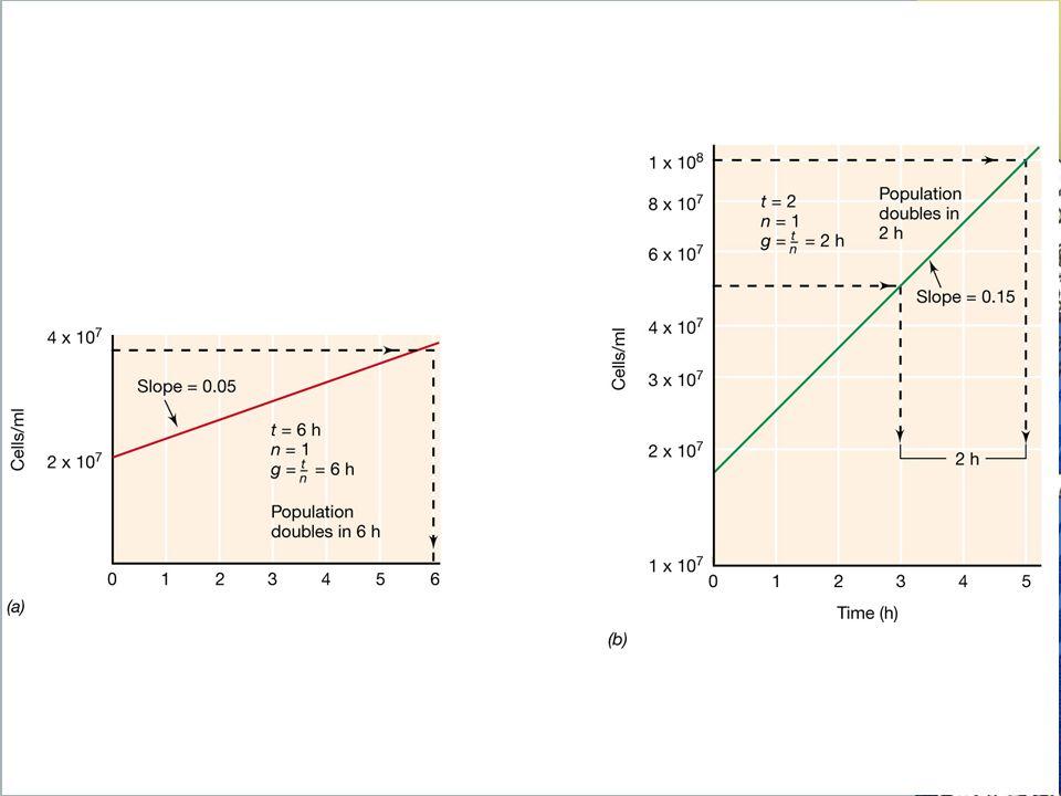 Método para estimar los tiempos de generación (g) de dos cultivos en cremiento balanceado.