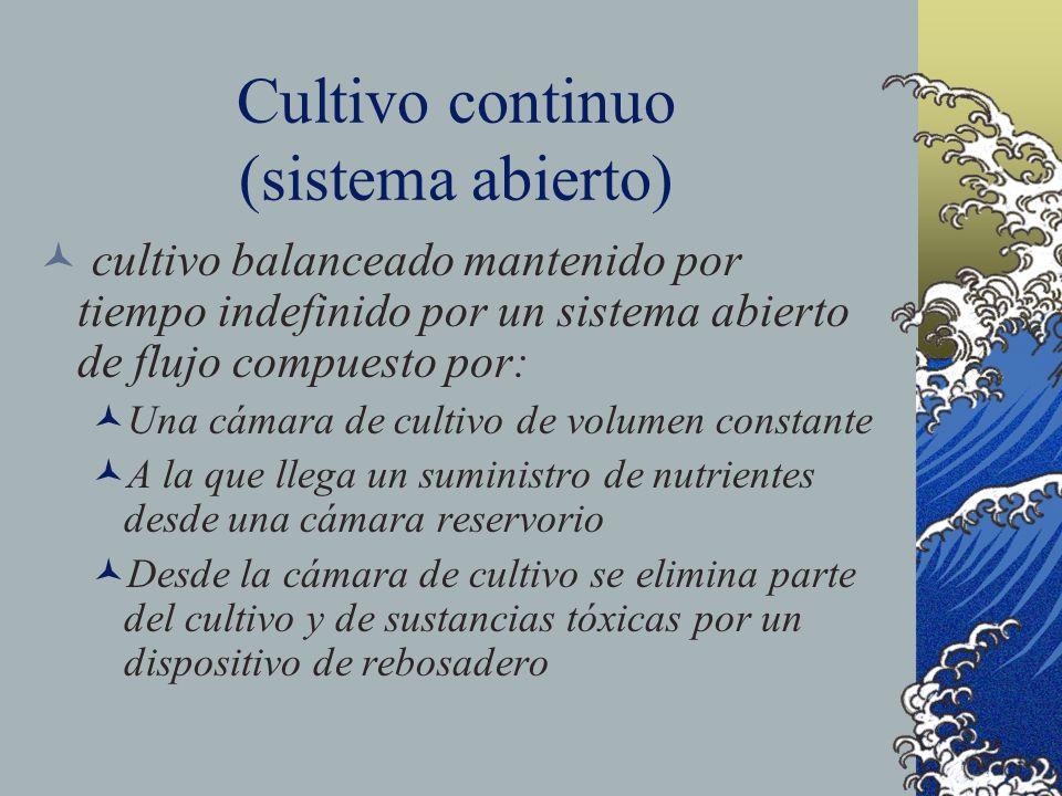 Cultivo continuo (sistema abierto)