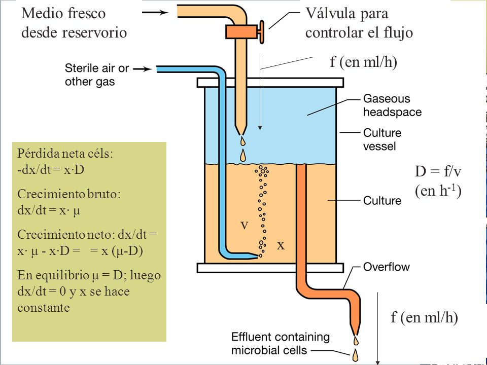 Medio fresco desde reservorio Válvula para controlar el flujo