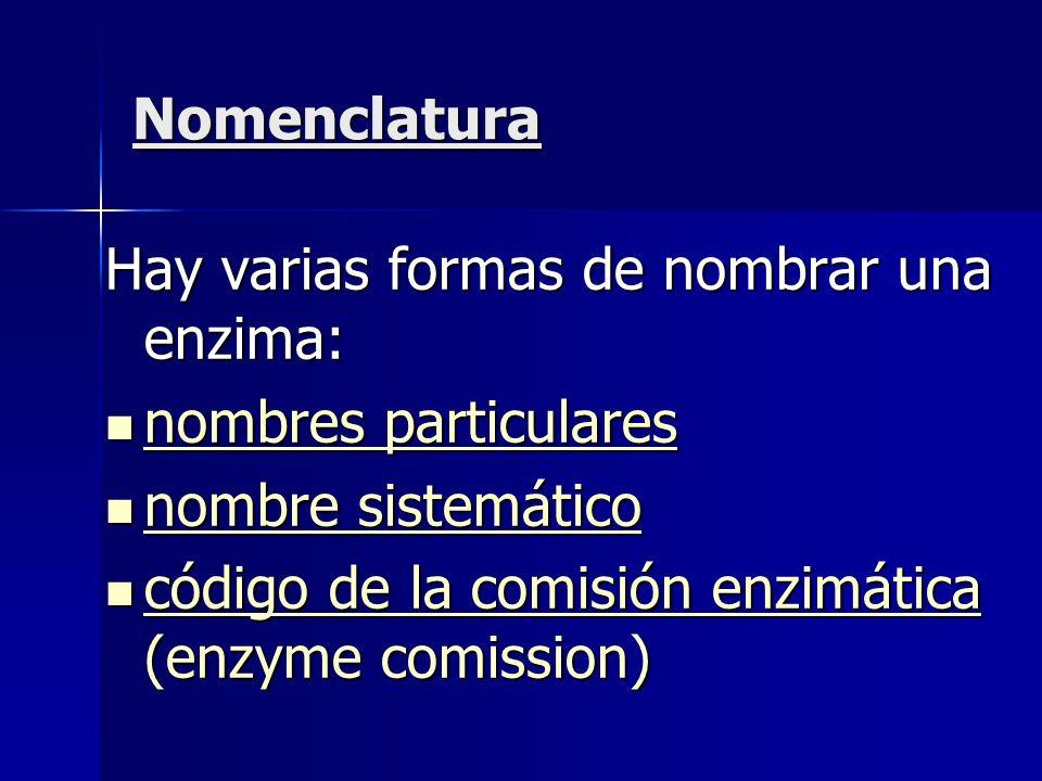 NomenclaturaHay varias formas de nombrar una enzima: nombres particulares.