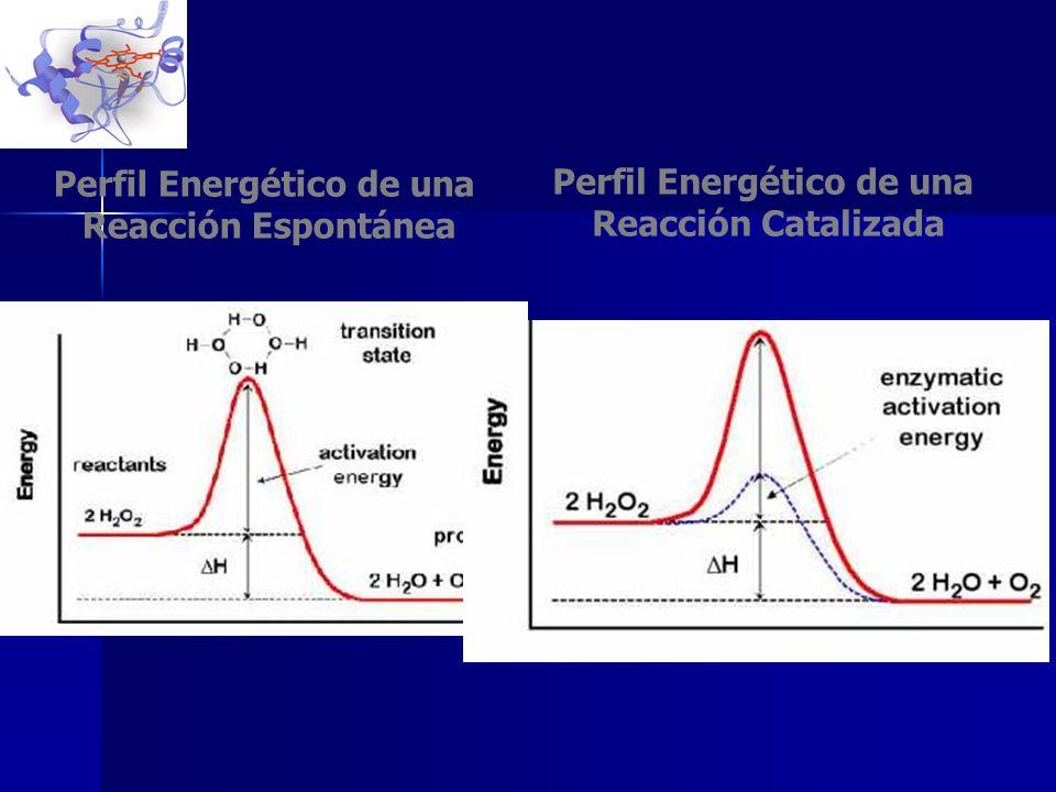 Perfil Energético de una Perfil Energético de una