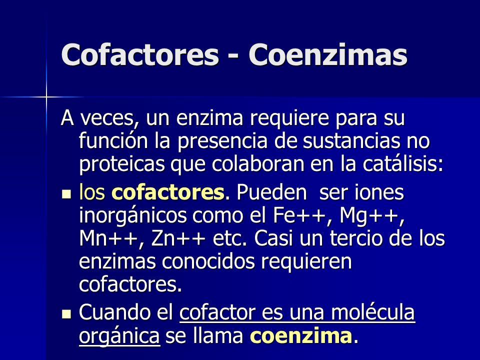 Cofactores - Coenzimas