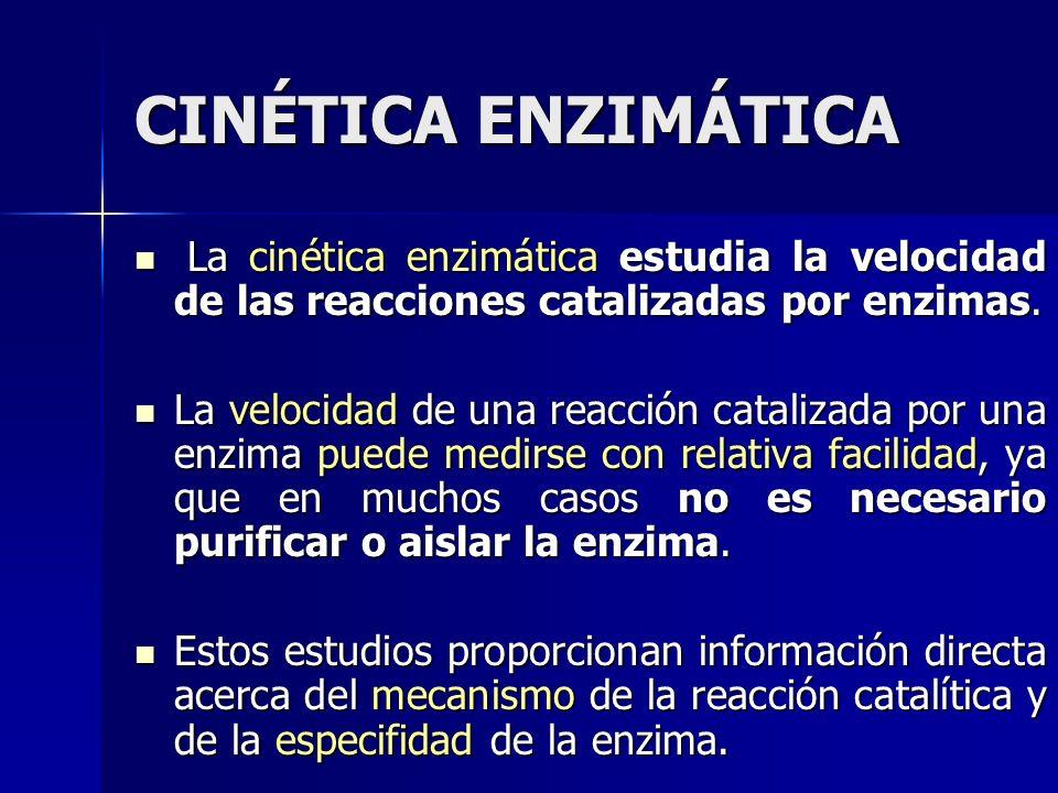 CINÉTICA ENZIMÁTICA La cinética enzimática estudia la velocidad de las reacciones catalizadas por enzimas.