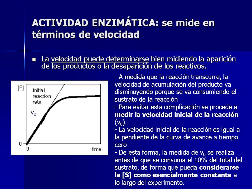 ACTIVIDAD ENZIMÁTICA: se mide en términos de velocidad