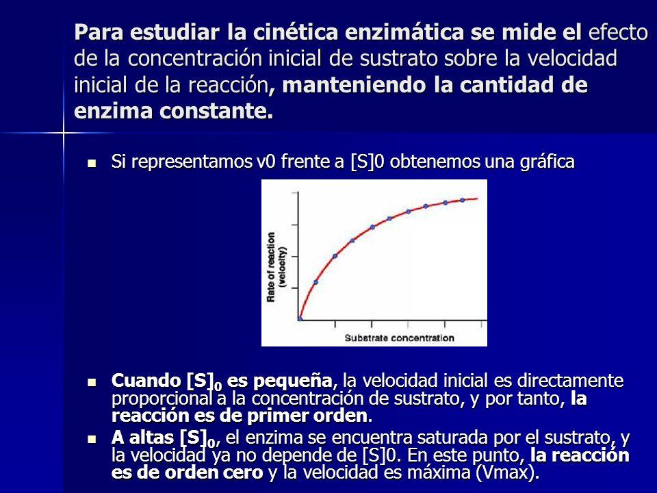 Para estudiar la cinética enzimática se mide el efecto de la concentración inicial de sustrato sobre la velocidad inicial de la reacción, manteniendo la cantidad de enzima constante.
