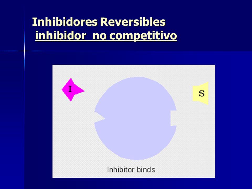 Inhibidores Reversibles inhibidor no competitivo