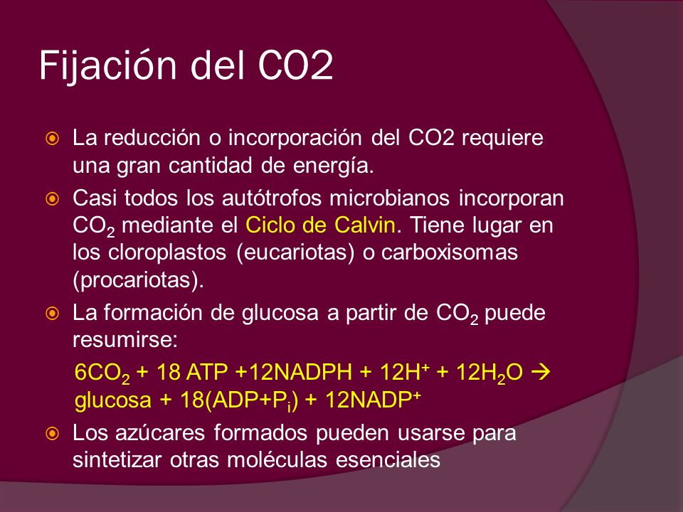 Fijación del CO2 La reducción o incorporación del CO2 requiere una gran cantidad de energía.