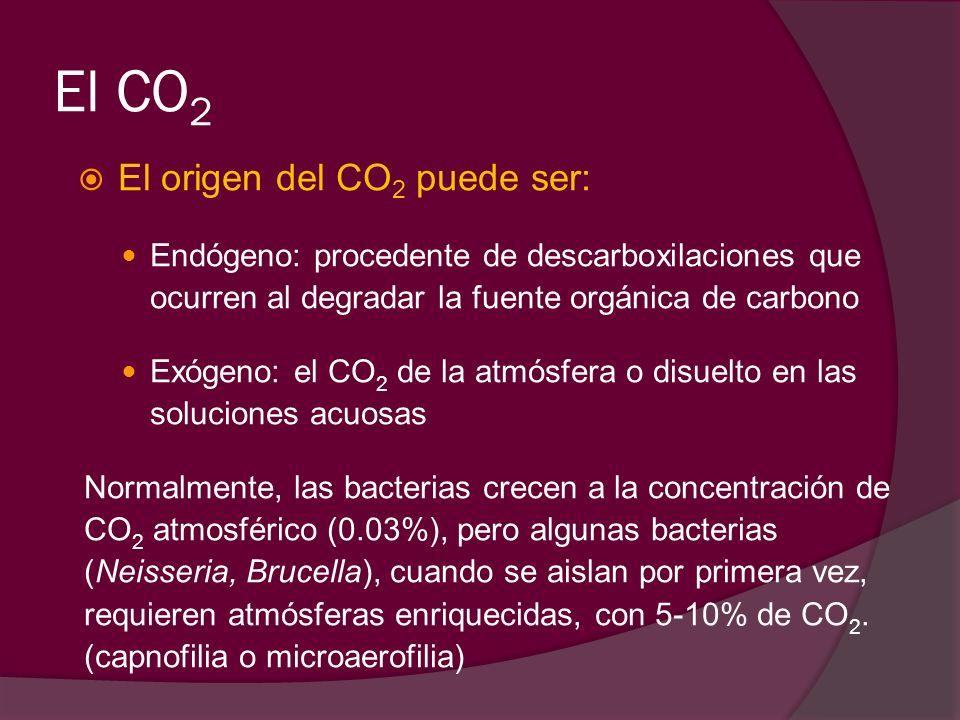 El CO2 El origen del CO2 puede ser: