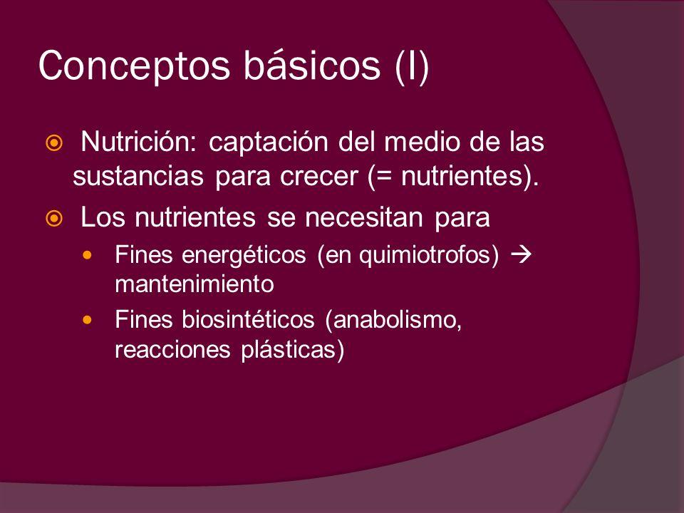 Conceptos básicos (I) Nutrición: captación del medio de las sustancias para crecer (= nutrientes). Los nutrientes se necesitan para.