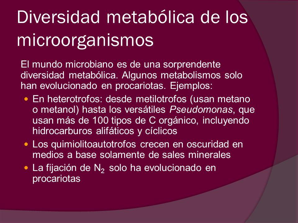 Diversidad metabólica de los microorganismos