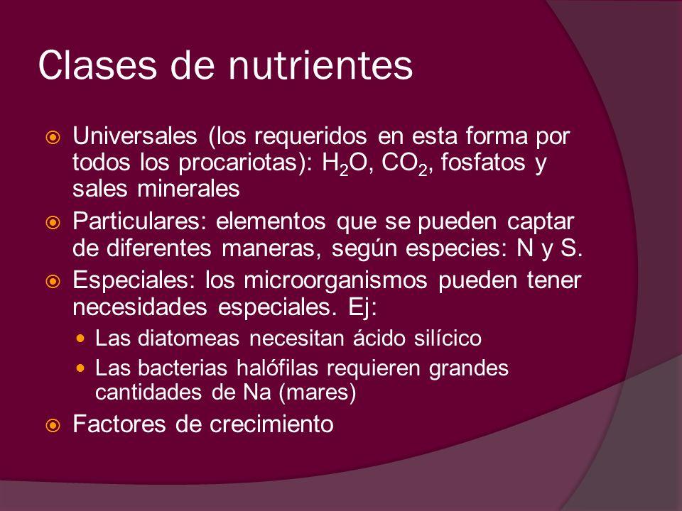 Clases de nutrientesUniversales (los requeridos en esta forma por todos los procariotas): H2O, CO2, fosfatos y sales minerales.